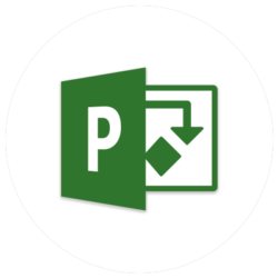 Microsoft Project - Bosholdt